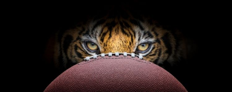 Tiger Pride Football Image